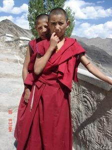 Junior Lamas