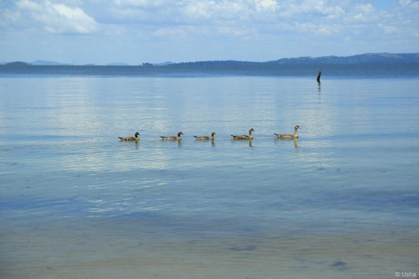Bulago Island